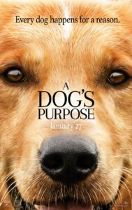 Top 5 hondenfilms - Dog's purpose