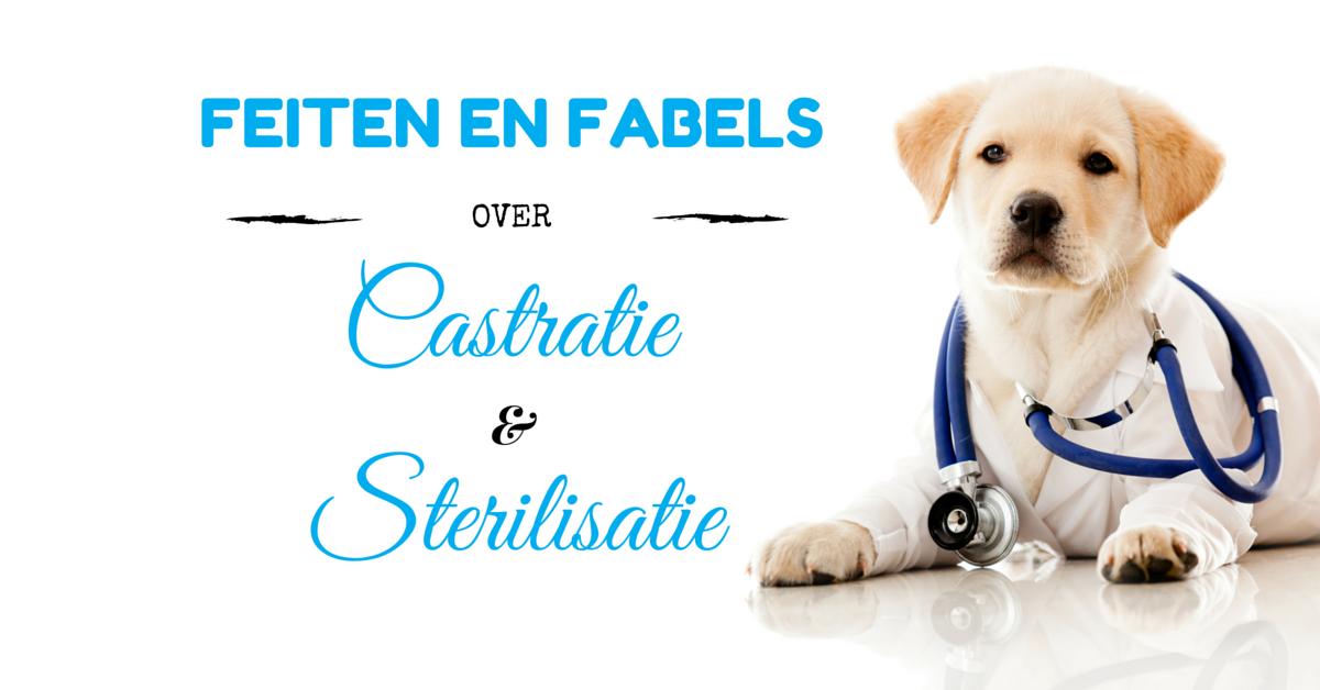 Feiten en Fabels over Castratie en Sterilisatie
